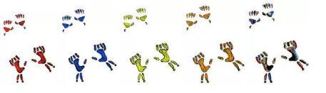 5-paws