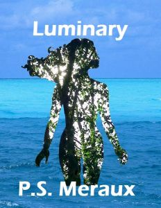 new Luminary book cover